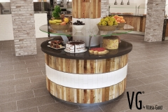 VG5F Concept #4